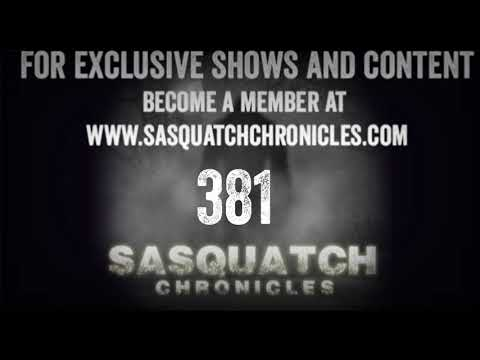 SC EP:381 Searching for the creatures