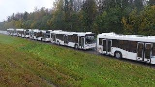 Колонна череповецких автобусов идет из Москвы