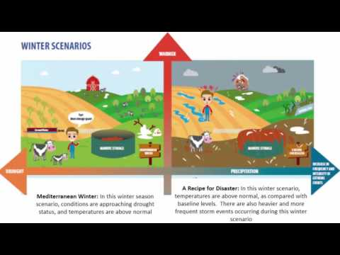 Scenario Planning for the New York State Dairy Industry in a