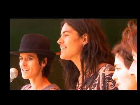 Seeds of Light - Luminate Festival Memoirs