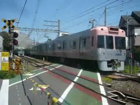 京王電鉄1000系(サーモンピンク色) 急行 井の頭線(警笛あり)