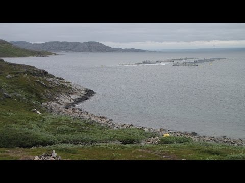 Northern Lapland and Barents Sea Shore by Car June 2013 Fast Motion Version