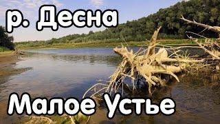 Место для рыбалки - р. Десна, с. Малое Устье, Черниговская область