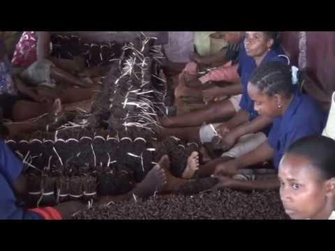MADAGASCAR - De Sambava à Antalaha - Côte de la vanille