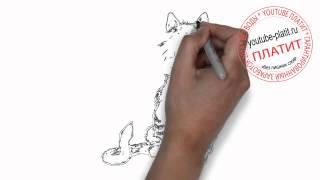 Как нарисовать зевающего кота карандашом