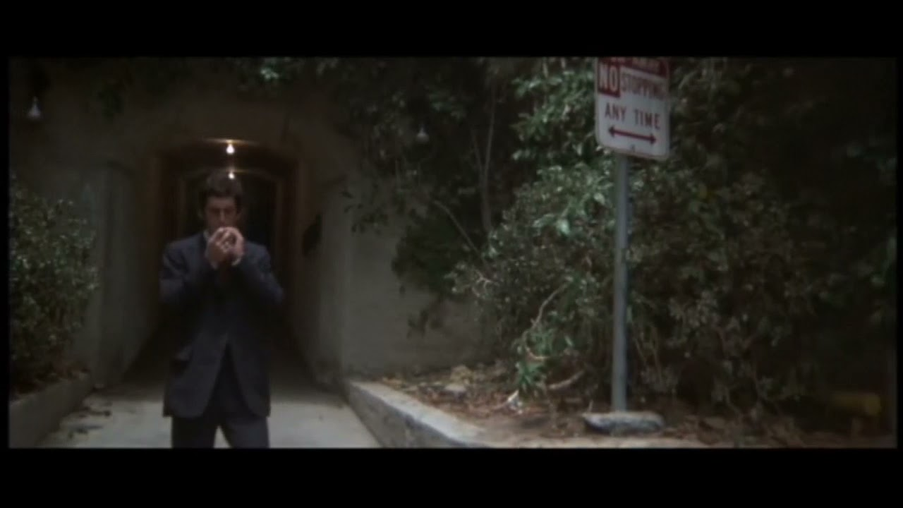 """""""The Long Goodbye"""" [1975] Philip Marlowe thanks his """"tail"""" (Harry) & explains YOGA to him..."""