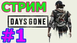 🔴DAYS GONE СТРИМ НА PS4 PRO #1 - СЫНЫ АНАРХИИ🔴