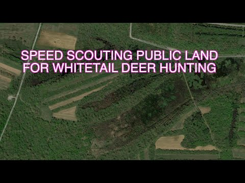 Speed Scouting Public Land For Whitetail Deer