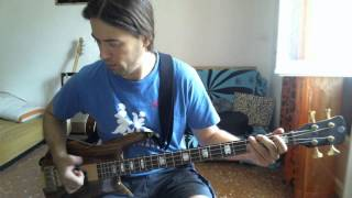 Living Colour Funny Vibe bass cover by Roberto Fasciani