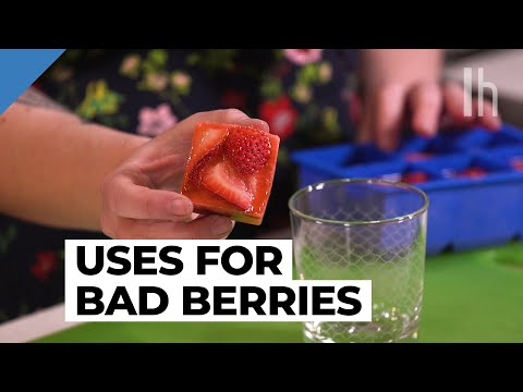 3-ways-to-use-bruised-strawberries-|-eating-trash