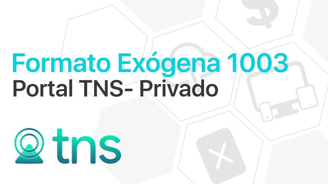 Formato Exógena 1003 en Portal TNS - Privado