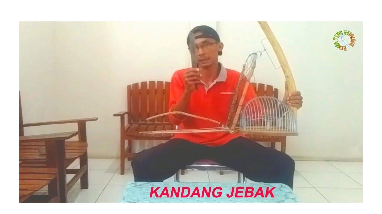 CARA MEMBUAT KANDANG JEBAK BURUNG (PERKUTUT) - YouTube