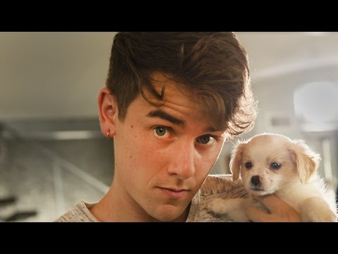Thumbnail: #Pixel: Puppies! by Connor Franta, Phone by Google