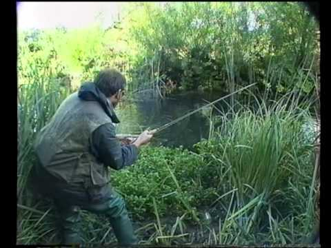 Kennet Upstream  Nymph Fishing. David Norwich Has An Encounter With A Big Brown Trout.