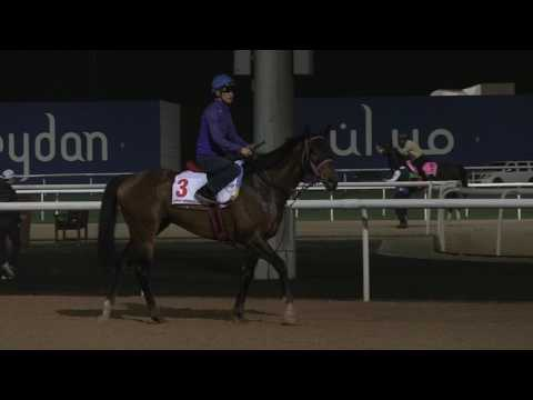 Dubai World Cup Carnival Contenders Morning Training March 22, 2017 - Part 1