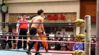 Japanese Amateur Wrestling