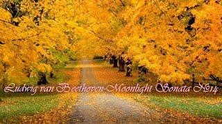 Ludwig van Beethoven-Moonlight Sonata №14