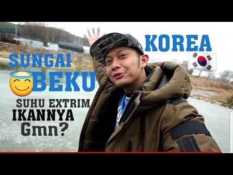 SUNGAI DI KOREA BEKU SAAT SUHU DINGIN