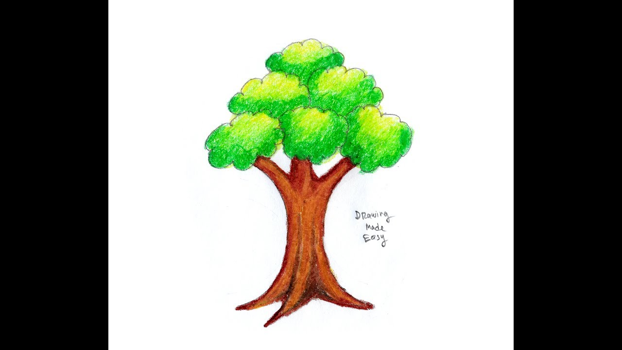 How To Draw Trees Easy For Kids Beginners Drawing Banyan Tree