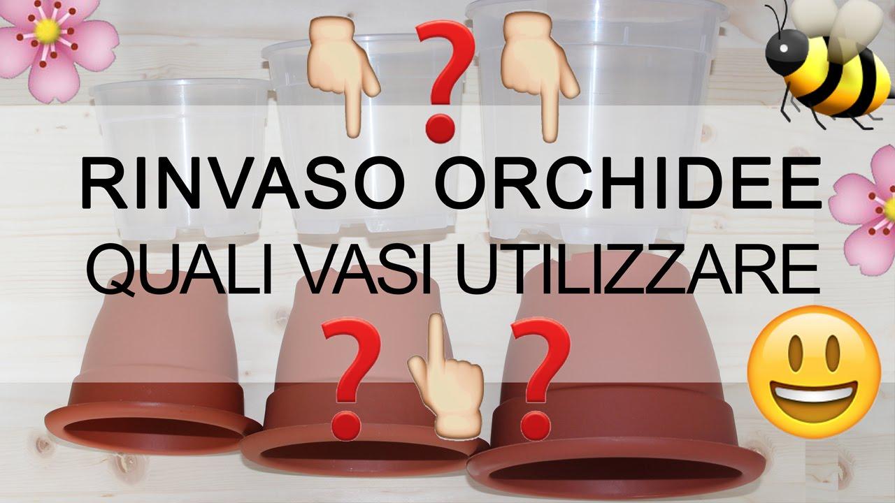 Rinvaso orchidee quali vasi utilizzare il mito sul for Vasi per orchidee ikea