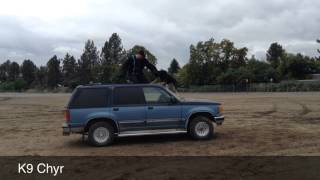Oregon Police Canine Association Fall 2013