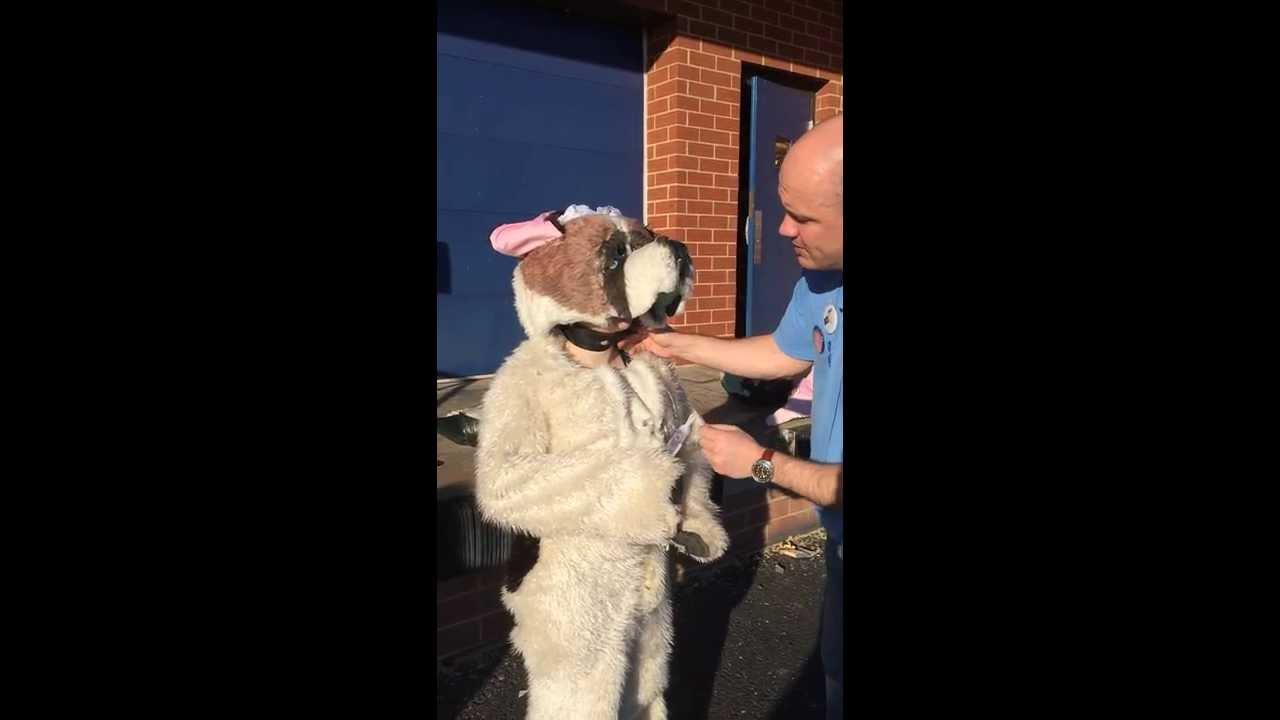 How to dress Nana Dog costume http://www.cytfredericksburg ...