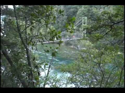 CHUBUT-Parque Nacional LOS ALERCES.mp4