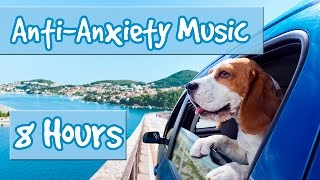 8 Hours of Music for Anxious Dogs - Music to help with Separation Anxiety and Nervous Dogs 🐶