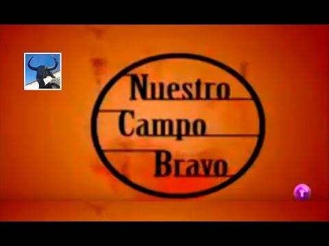 Ganadería de D. Julio A. de la Puerta y Castro (Nuestro Campo Bravo - Año 2008)