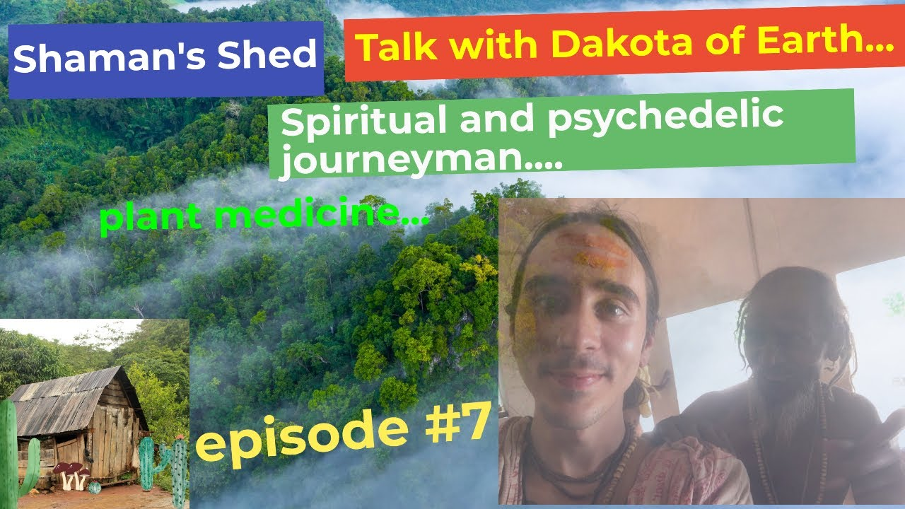 #7 Talk with Dakota of Earth | Psychedelics, DMT, Entities & Why is Shamanism Re-emerging?