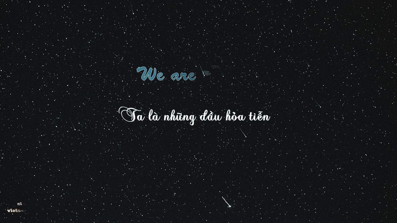 p-nk-what-about-us-vietsub-lyrics
