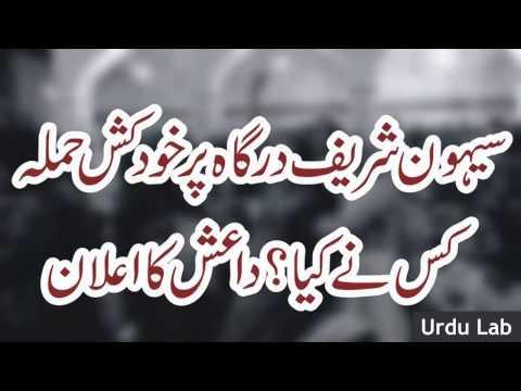 sehwan sharif bomb blast lal shahbaz qalandar blast diash ka ● Urdu Lab Latest News 29