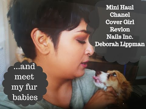 Mini Haul | Chanel | Cover Girl | Revlon| Nails Inc + meet my fur babies