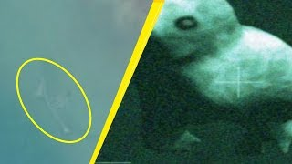 5 Underwater Monsters People Found In The Ocean!
