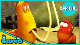 larva funny animation  larva and the spaghetti  cartoons for children  larva official