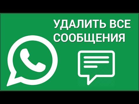 Как удалить сообщение в WhatsApp на IPhone? Удаляем определённые сообщения в Ватсап