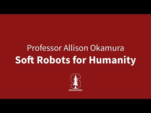 Soft Robots for Humanity