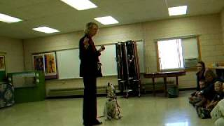 Dalmatian Fire Safety Demonstration 2010