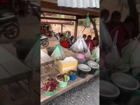 Wildlife market in laos
