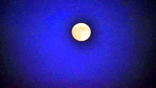 AFFABILE LUNA poesia di Sabina Scherlippens con foto di Rossella Sturiale.Translation see youtube