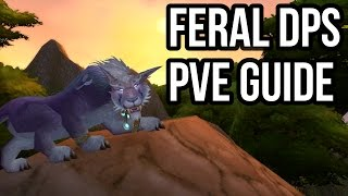 Quick Feral DPS Druid PvE Guide (2.4.3) [WoW TBC]