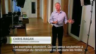 Tarification provinciale du carbone : les prochaines étapes