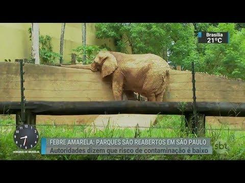 Zoológico de São Paulo, Zoo Safári e Jardim Botânico são reabertos | SBT Brasil (15/03/18)