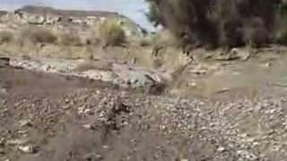 Amazing Flash Flood Footage, David Rankin Rankinstudio.com