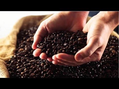 Clique e veja o vídeo Curso Produção de Café Orgânico