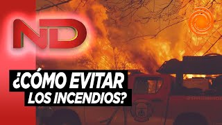 Ambientalistas juntan firmas para petitorio por una mayor prevención de los incendios