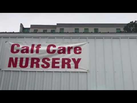 Calf Care Nursery