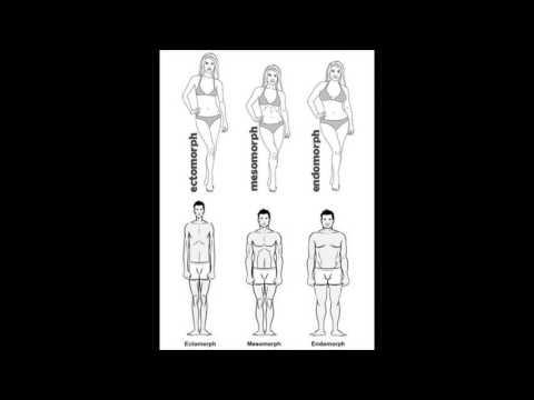 признаком астенического типа телосложения