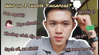 #Vlog1 DU HỌC SINGAPORE 🇸🇬| 5 LÝ DO TẠI SAO MÌNH CHỌN ĐI DU HỌC TẠI SINGAPORE | harrydailyyy