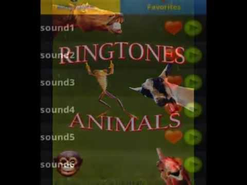 Animal Ringtones